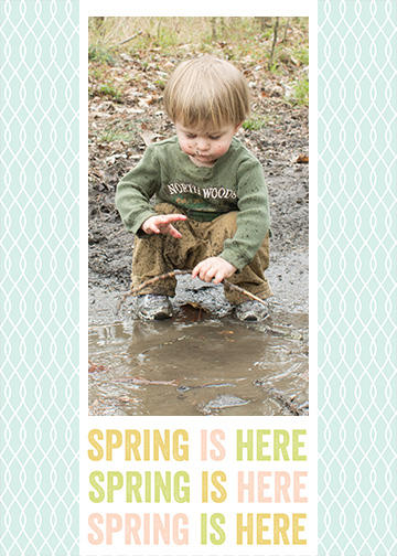 Spring is Here Free Photoshop Template