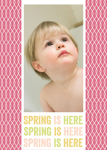 Spring is Here Photoshop Template