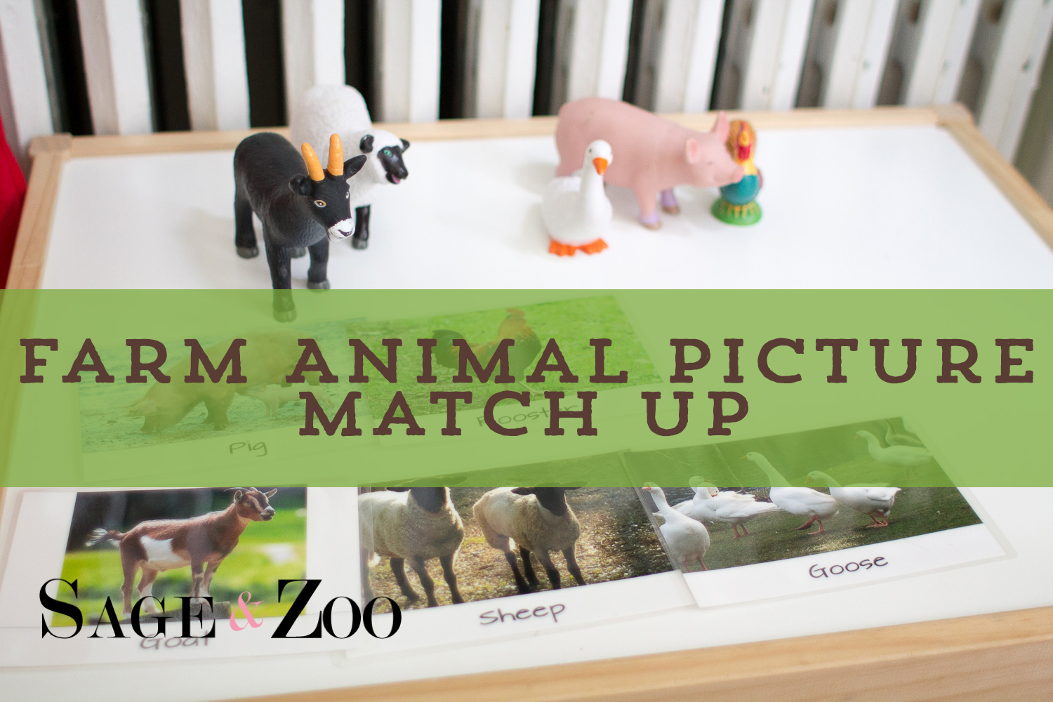 Farm-Animal-Picture-Match-Intro
