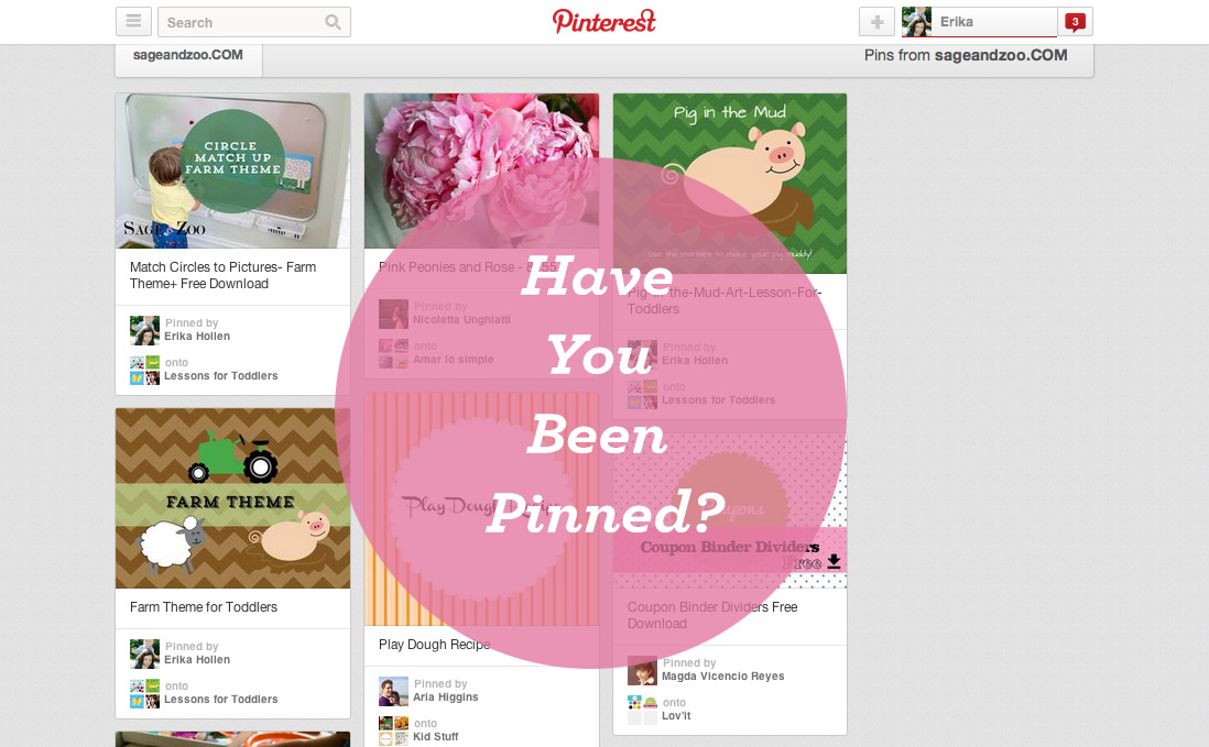 Pinterest- has your website been pinned?